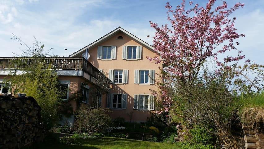 Sunny and lovely apartment - Hinwil - Huoneisto