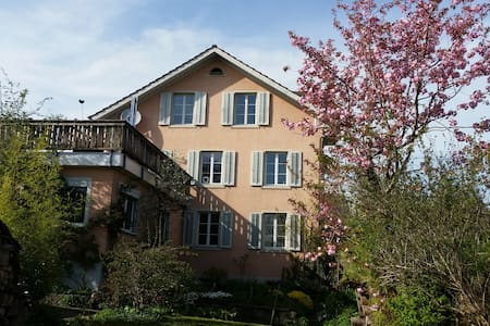 Sunny and lovely apartment - Hinwil