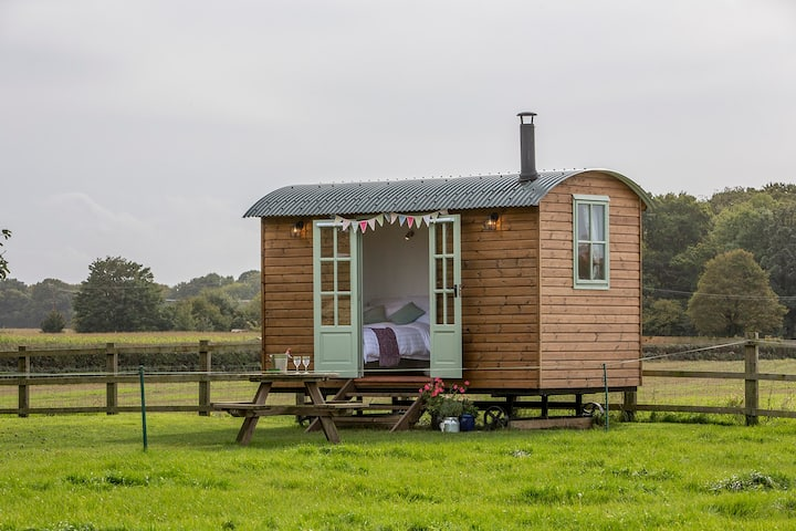 Bed & Breakfast Experience in Shepherds Hut.