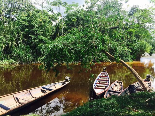 Munay Selva, Turismo Vivencial! - Tarapoto