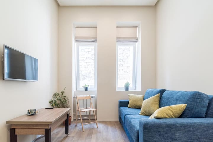 Modern studio with folding sleeper couch
