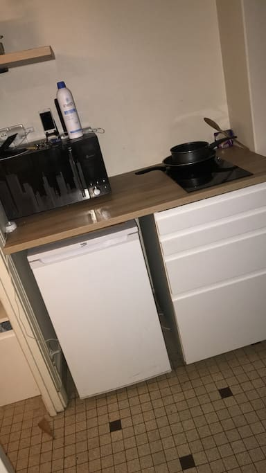 Cuisine (micro-ondes, frigo, table de cuisson).