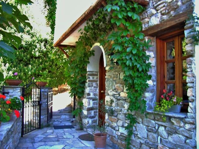 Villa Daphne in Megalos Prinos (Kazaviti) Thassos