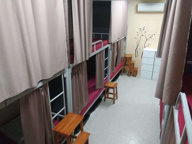 @1-bed in 10-Bed Mix Dormitory