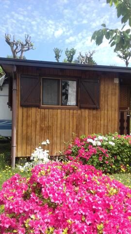 Caravan and wooden chalet