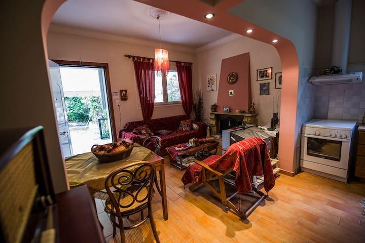Μονοκατοικία  Σε Drosia