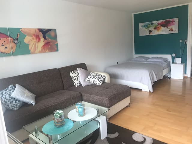 Helle 1-Zimmer-Wohnung mit Balkon in ES-Zollberg