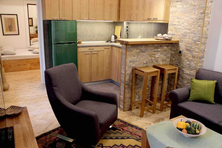Quiet and comfy downtown apartment