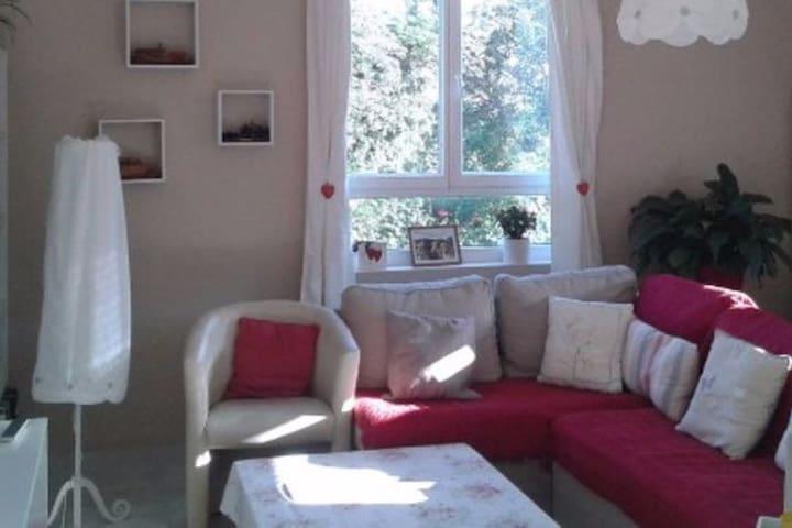 Maison de charme  (à 5 minutes du ValJoly) - Willies - Huis