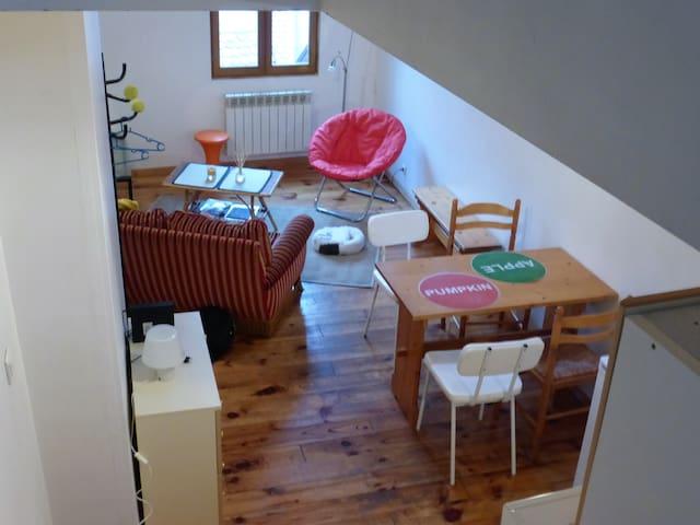 Lumineux T2 Duplex 52 m² au coeur d'Annecy