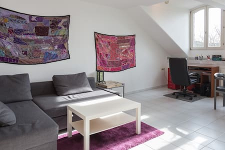 City Centre - Big independent room - Bonn - Appartamento