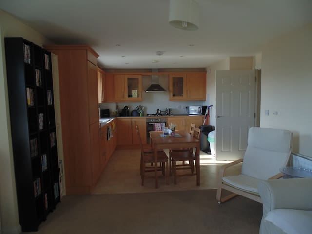 2 bed flat Cardiff bay - WIFI and parking space - Cardiff - Apartamento