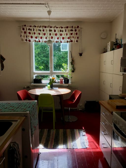 Kitchen, view to the garden