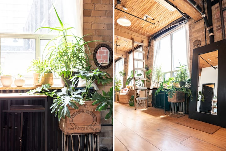 Eclectic rustic furniture and plant pots