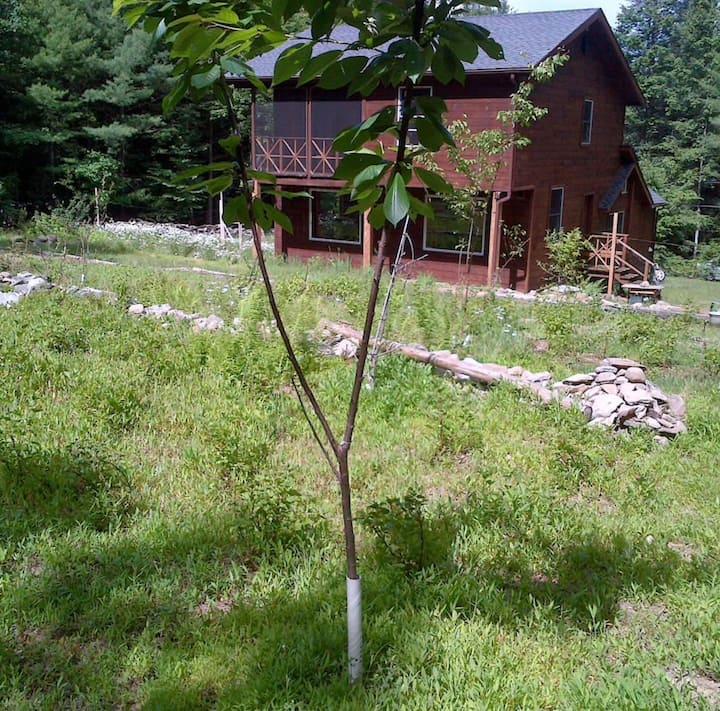 Tabasco Lodge Tabasco, NY - Suite 2