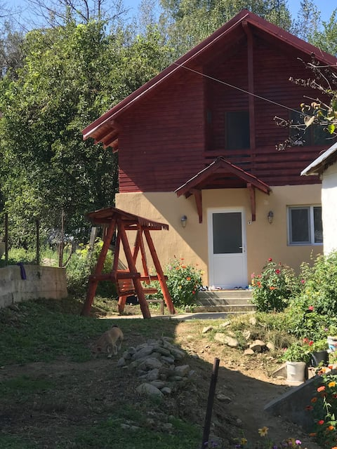Mountain escape in Carpathian