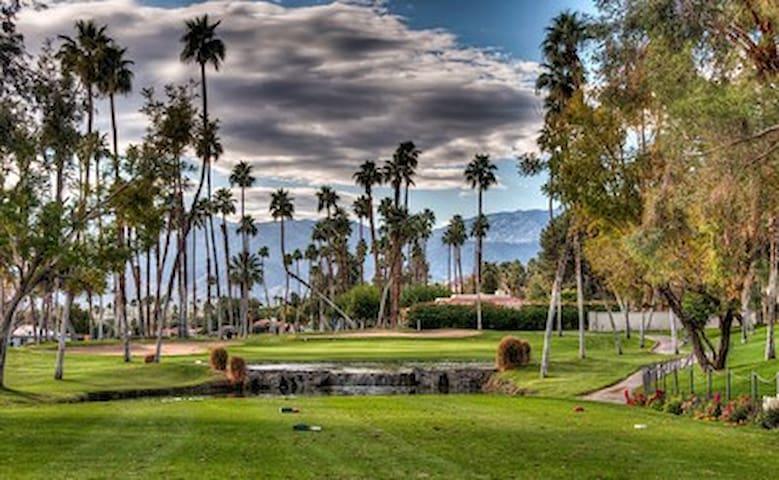 Beautiful Rancho Las Palmas 5