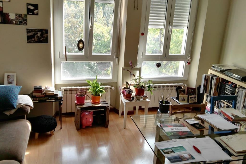 Salón, zona compartida del apartamento