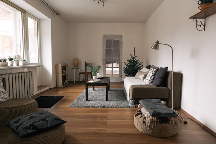 Cozy bright flat nearby oldtown - Vílnius