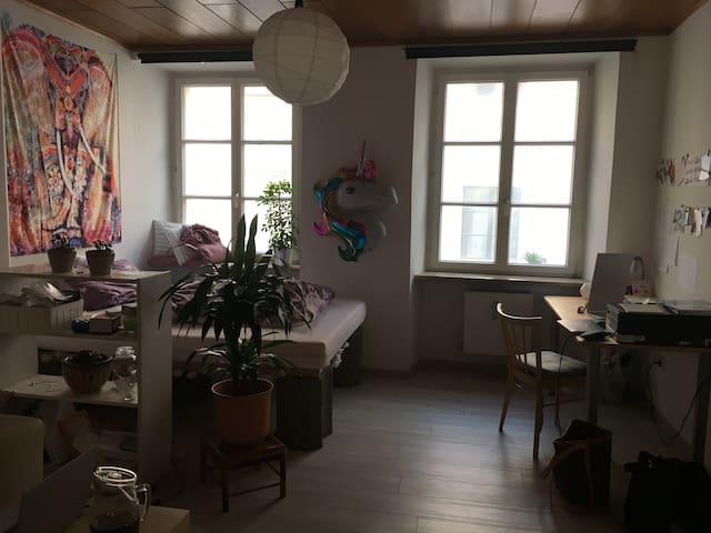 Gemütliches Zimmer in Altstadt