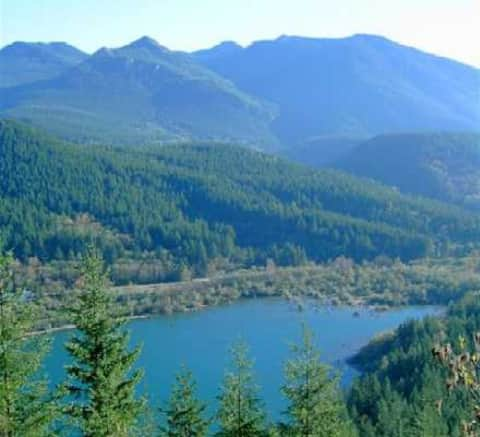 North Bend Bliss