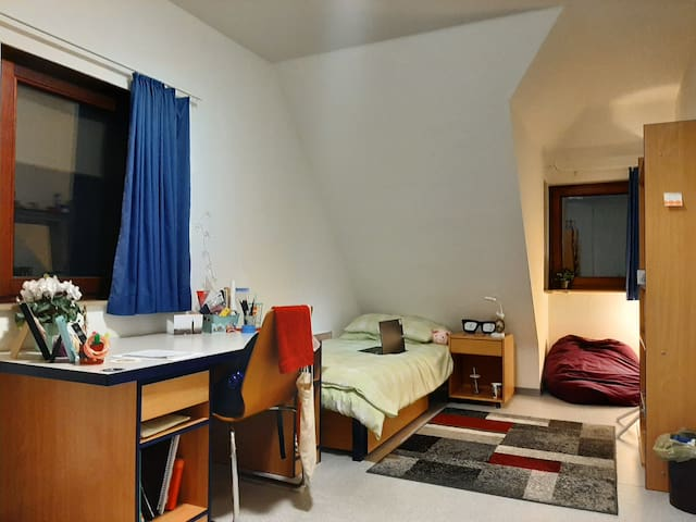 Student WG for Rent (only for students)