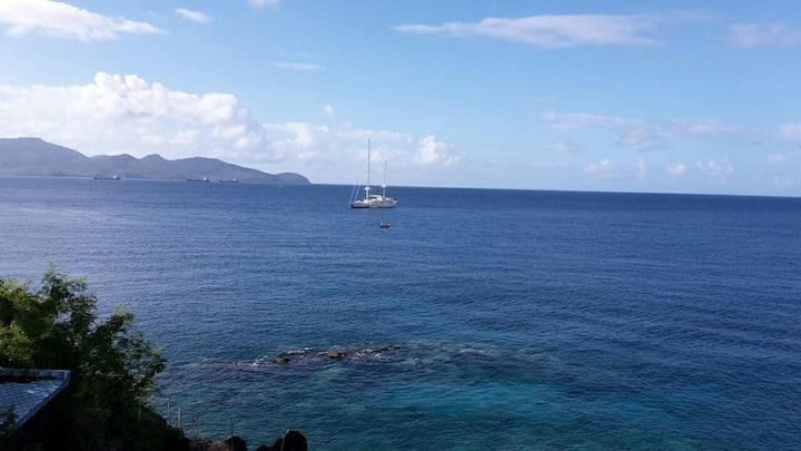 Catamaran à quai à pointe à pitre