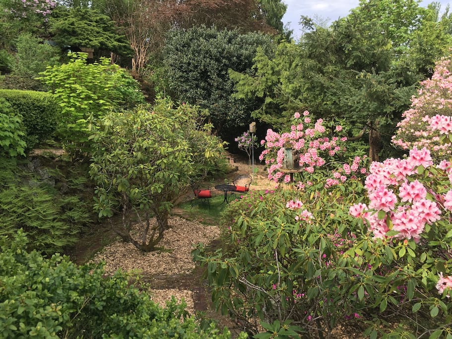 Garden in the spring and summer months
