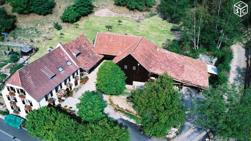 """Logement au pied des Vosges """"Schnepfenried"""""""