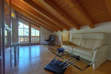 Schönau, Luxurious apartment, mountain views