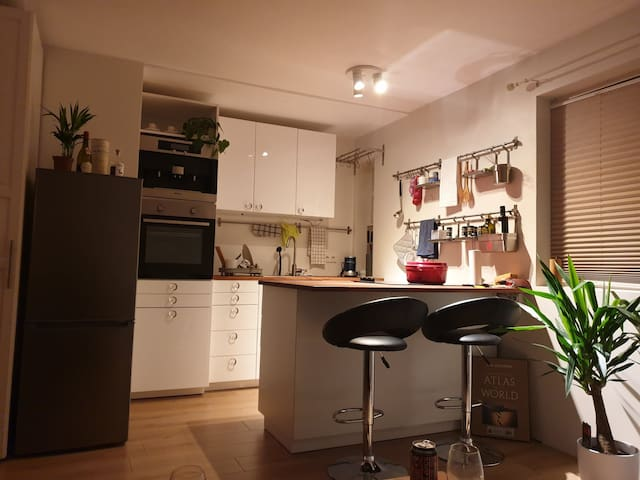 Completely renovated central apartment