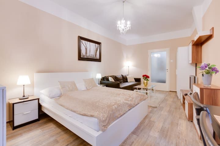 Royal Groundfloor Apartment in the Heart of Prague
