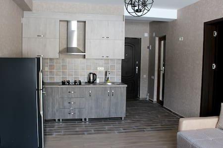 bakuriani villa - Bakuriani - Appartement