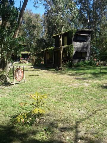 Cabaña en Sauce de Portezuelo - Sauce de Portezuelo - Casa
