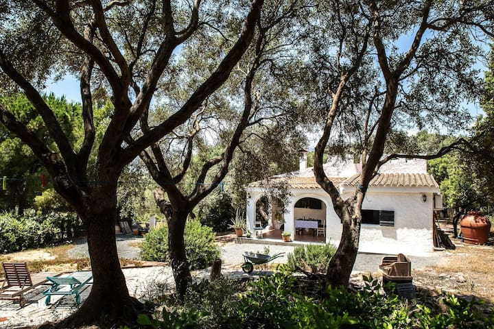 """Charming Holiday Home """"Lilly-Accogliente Villetta tra gli Ulivi"""" with Mountain View, Wi-Fi, Garden & Terrace; Parking Available, Pets Allowed Upon Request"""