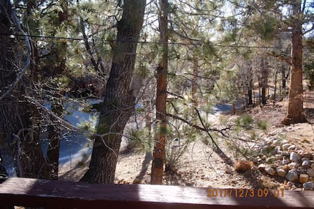 Dog Friendly House Steps Away from National Forest