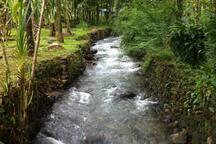 Active Water Stream