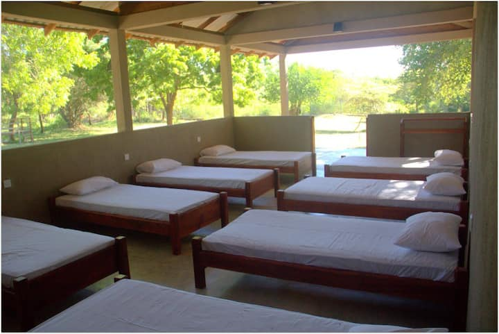Dormitory for Back Packers - Yala National Park