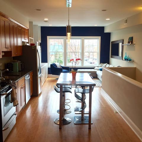 Central, luxury 1bd w/ private deck - Washington - Huis