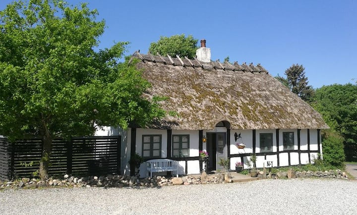 Cosy cottage with history in beautiful nature