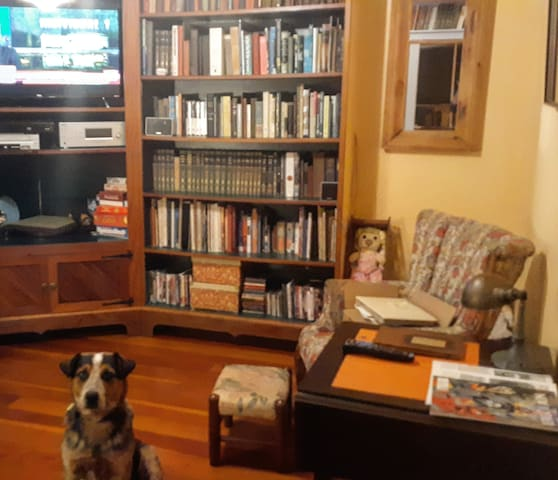 Tv/reading room. Private to suite. Dog not included.