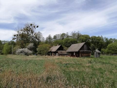 Ecohouse Chata na balocie v Belovezhskay Pushche