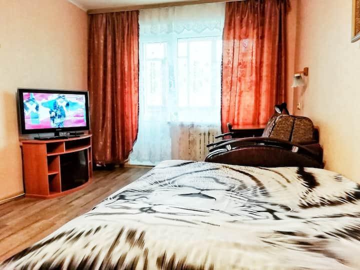 Уютная квартира на Гузовского