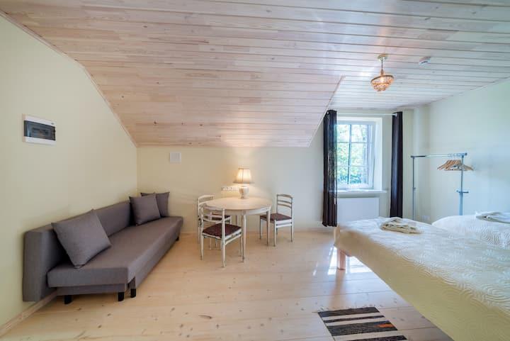 Room no.8 (family 4) - guesthouse SVILPAUNIEKI