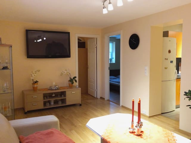 Cozy apartment close to Heistadmoen Skistadion