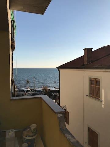 Apartment in Novigrad - Novigrad - Apartemen