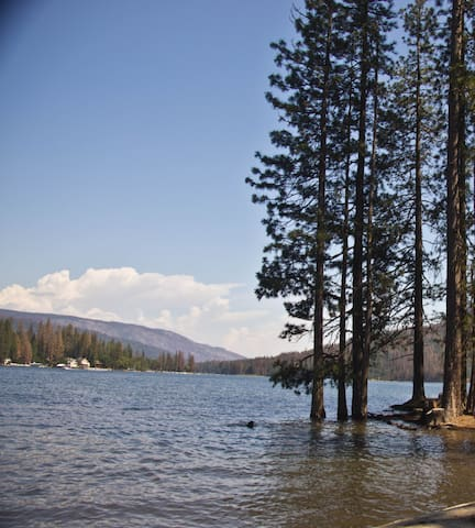 Walk to Bass Lake . Miles of trails . Pet friendly - Bass Lake - Дом