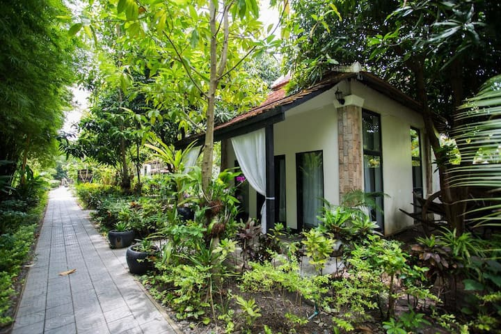 Private Bungalow, Swimming Pool, Free Bikes