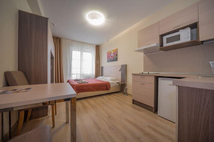 Апарт-отель у Пулково 17-й этаж Студио