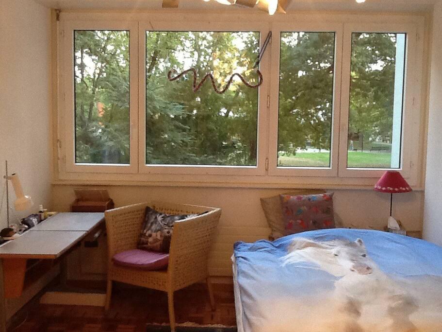 Spacious luminous room apartments for rent in gen ve gen ve switzerland for Construction piscine geneve
